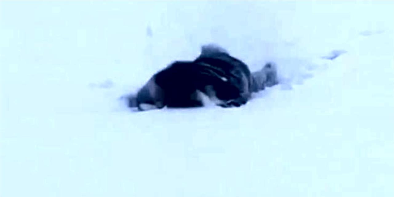 Eksi 5 derecede karda yüzdü