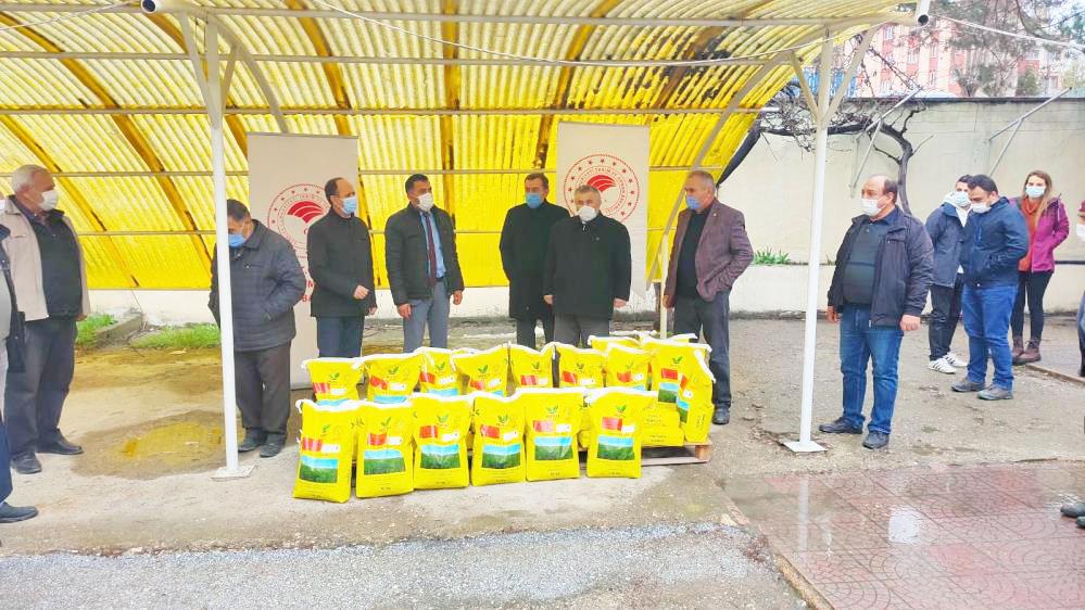 Çiftçilere yonca tohumu dağıtıldı