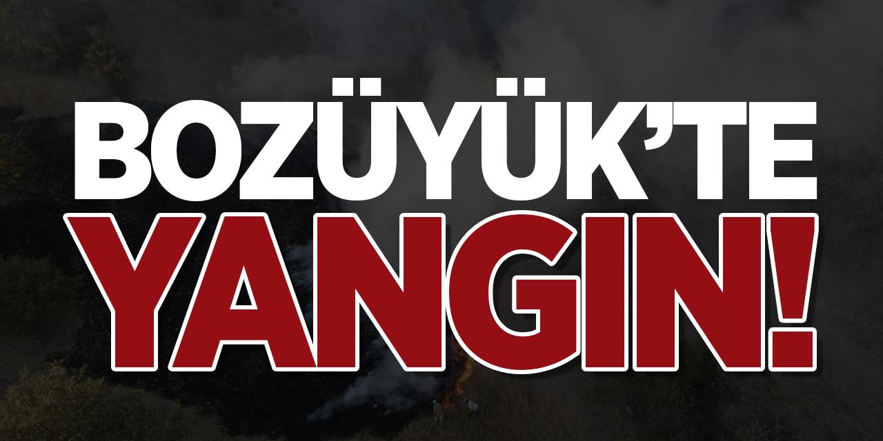 Bozüyük'te yangın!