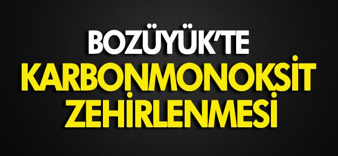 BOZÜYÜK'TE KARBONMONOKSİT ZEHİRLENMESİ