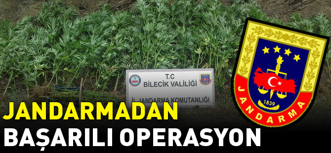 JANDARMADAN BAŞARILI OPERASYON