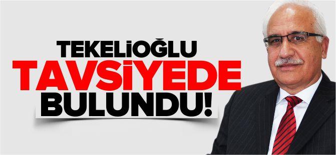 TEKELİOĞLU, TAVSİYELERDE BULUNDU