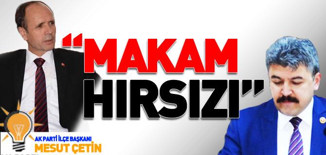 """MAKAM HIRSIZI"""
